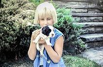 photo, child, puppy, outdoors, blond, girl, Springer Spaniel