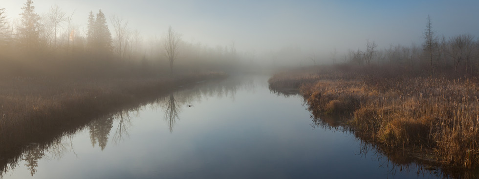 Spring fog over the water
