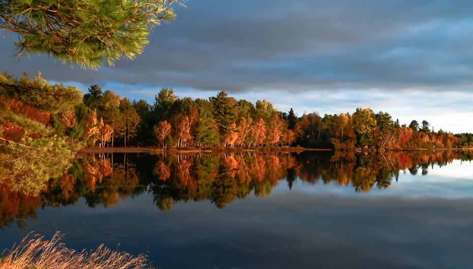 Autumn Colour Brilliance