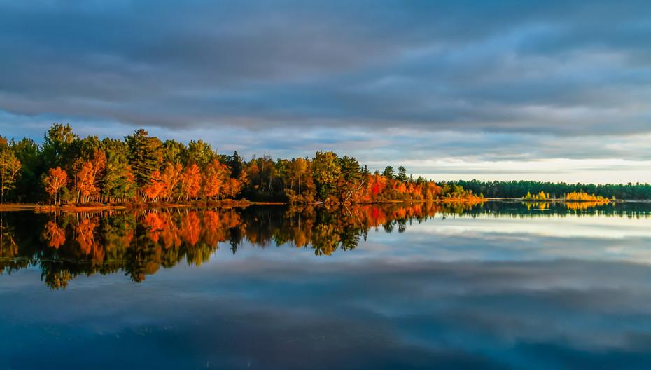 Vibrant colours of Autumn