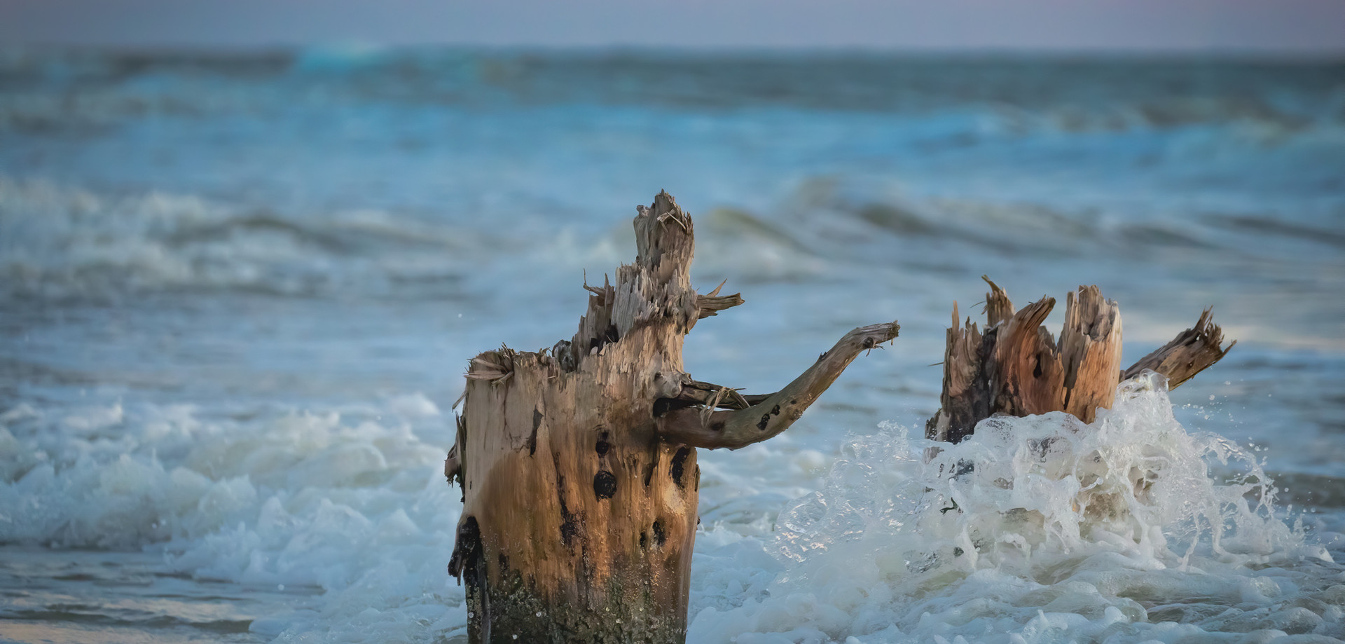 Water funnels around a stump