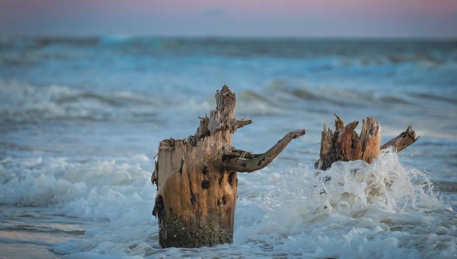 Water funnels around a stump