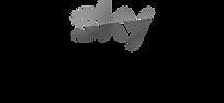 sky-tempest-logo.png