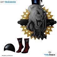 Kits_-_triássico_g.jpg