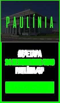 Paulínia2.png