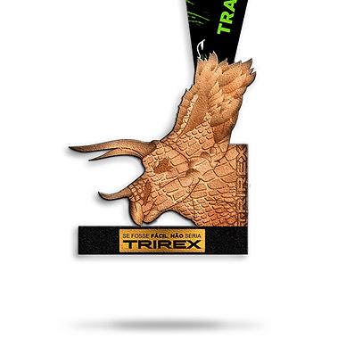 Kit 1 - Triceratops - OK.png