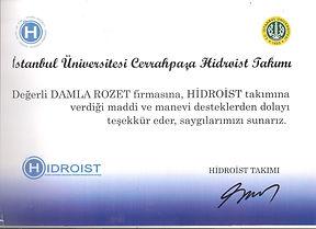 İstanbul Üniversitesi Cerrahpaşa Hidroist Takımı