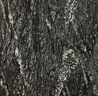 Titanium Black granite countertop sample