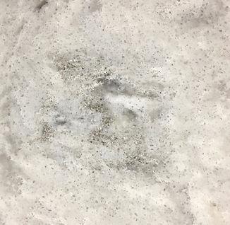 Rolling Fog quartz countertop sample