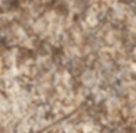Golden Romano laminate countertop sample by Wilsonart HD