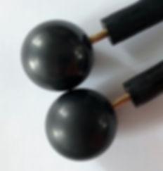 Shungite electrodes