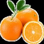 laranja-suco-800x800-min.png