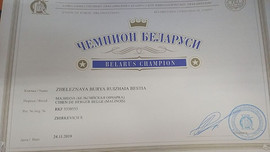 Zheleznaya Burya Ruizhaia Bestia