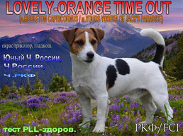Lovely Orange Time-Out