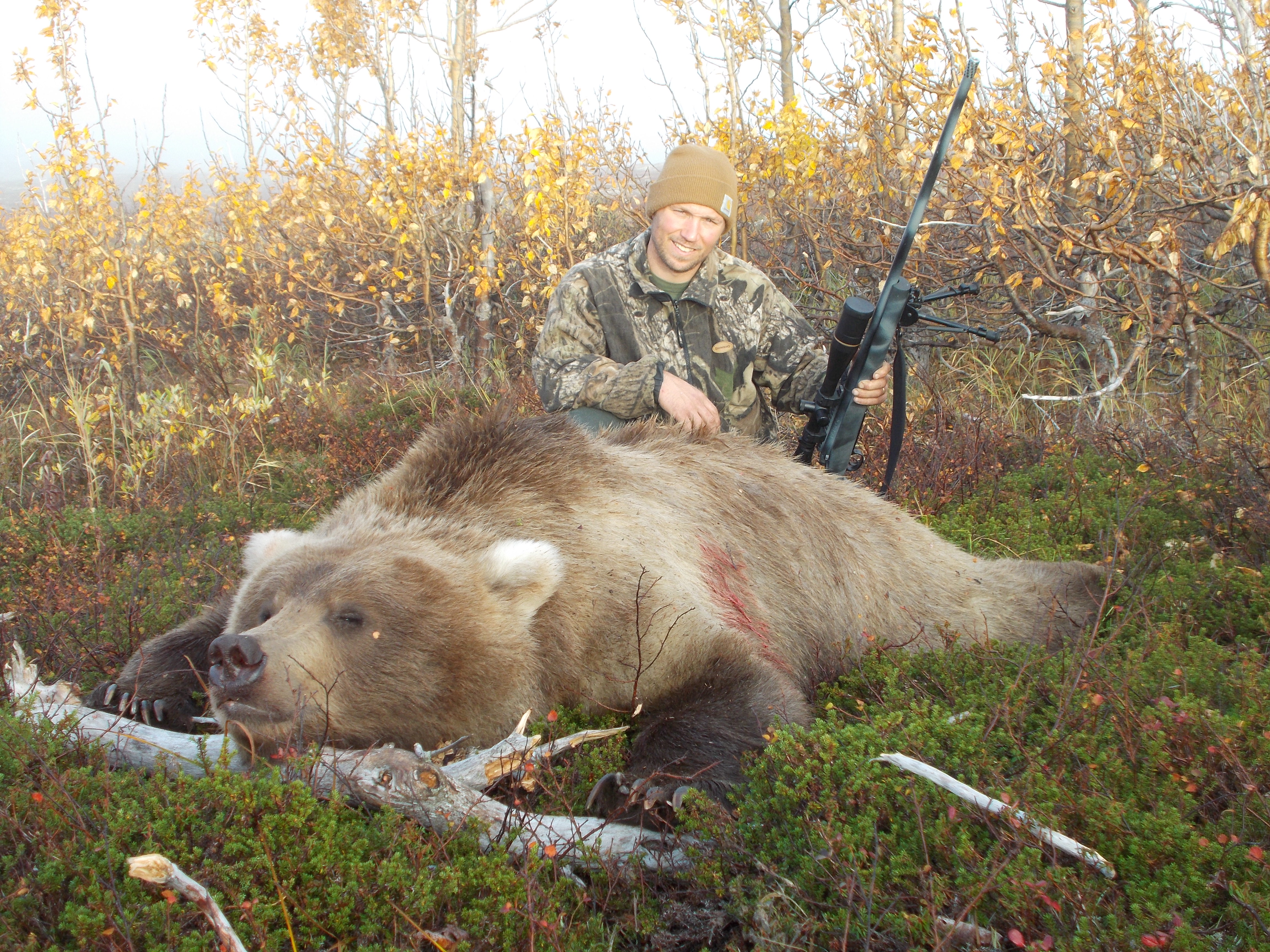 CT Bear.JPG
