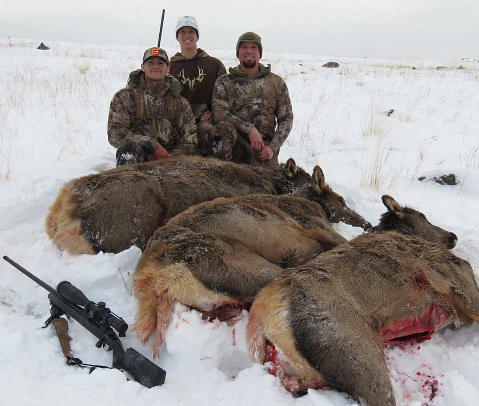 Three cow elk in three shots at 408 yards using the Northwest Action Works 300 RUM