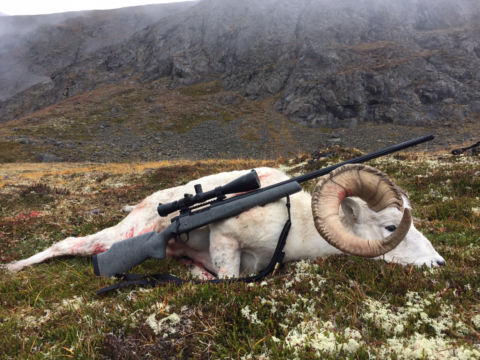 A.Martushev NW Backpacker Custom Rifle with Sheep.JPG