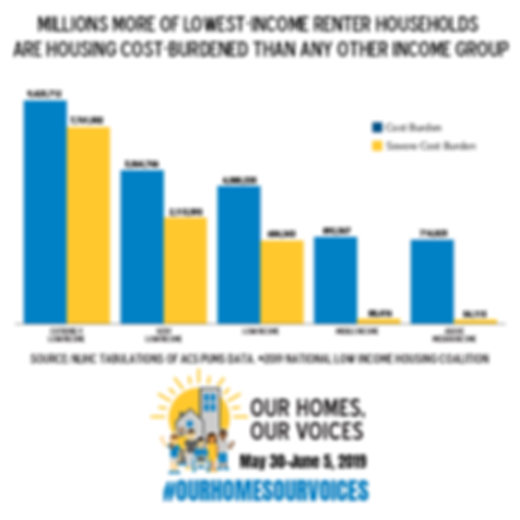 Our-Homes-Our-Voices_Infographic_06_Inst