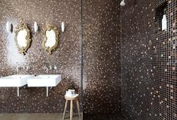 Room 1 shower