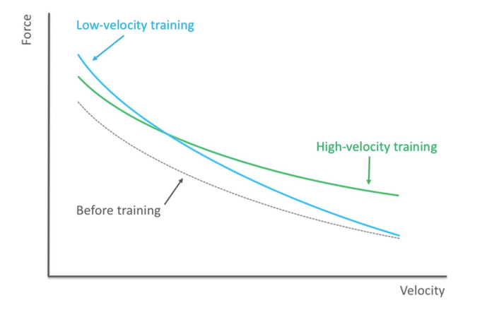 "Force-Velocity Curve; adapted from ""Strength is Specific"" v1.0"