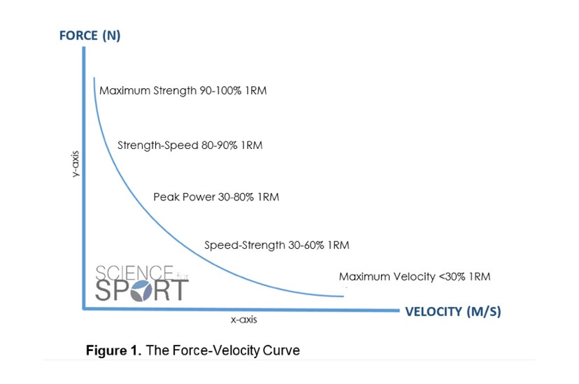 Force-Velocity Curve from Science of Sport