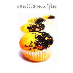 vanilla muffin (popular)