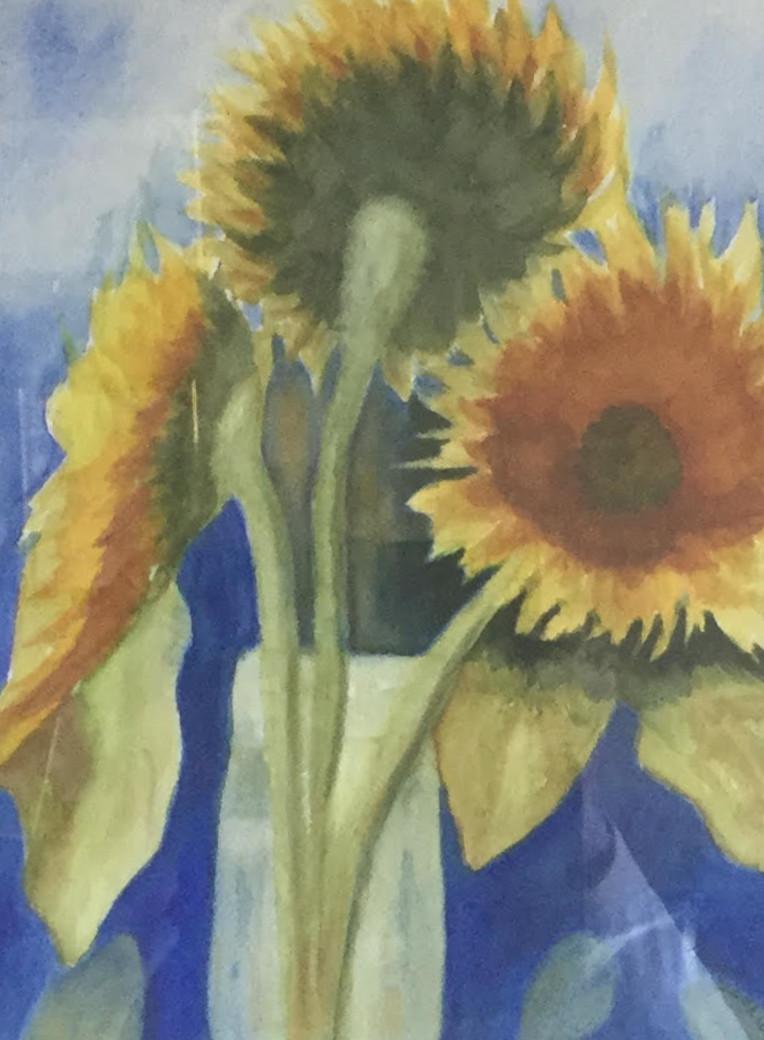 Pueblo Sunflowers