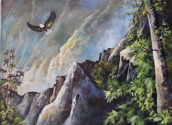 Soaring eagle in the mountains