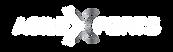 Agile Xperts Logo White-01.png