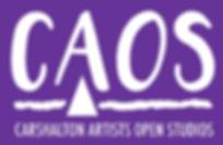 CAOS logo 2018 dates_edited.jpg