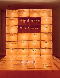rigid tree.jpg