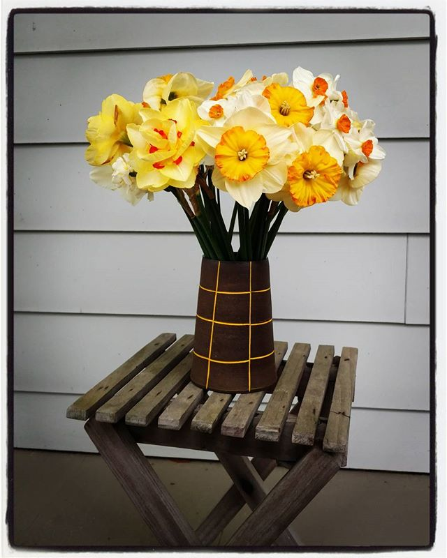 My mother's daffodils