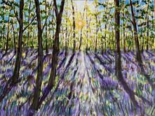Lavender Fields.jpeg