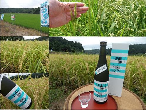 清泉 越淡麗 純米吟醸1800ml