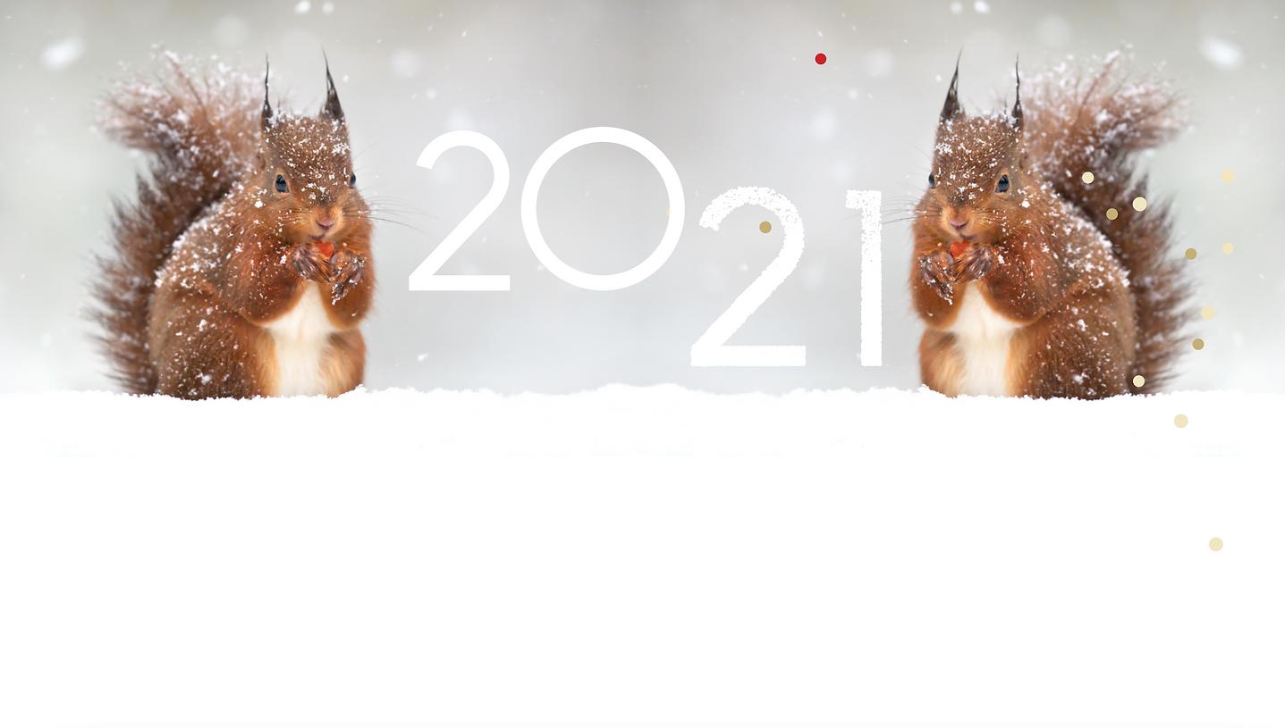 Schermafbeelding 2020-12-30 om 14.39.50.