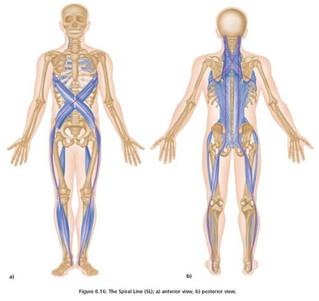 Болки в гърба и Боуен терапия