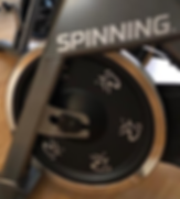 Spinning.png