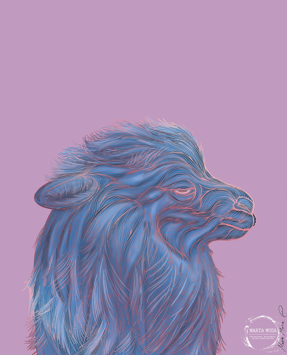 Contour line drawing of an Alpaca in profile.  He is coloured in shades of blue and the contour lines are in shades of a metallic/shiny pink.   The illlustration is done against a mauve background