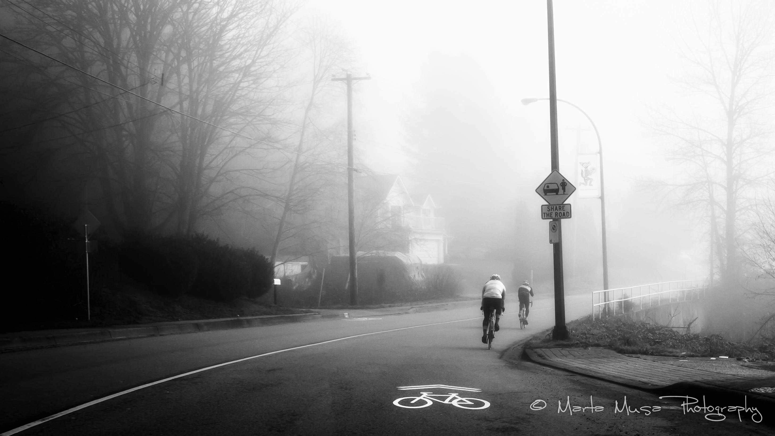 My love affair with fog