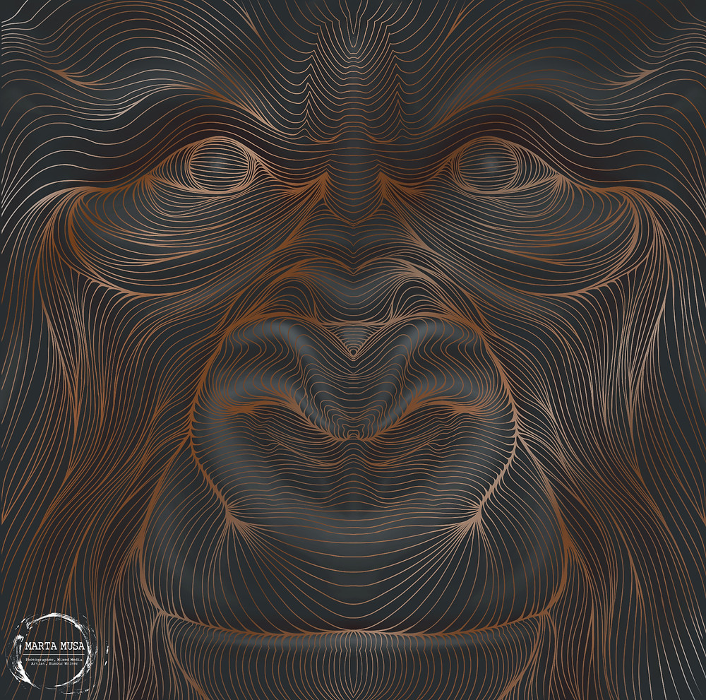 Contour of a male Gorilla's face looking directly at you.  The lines are done in an irredescent bronze against a black background