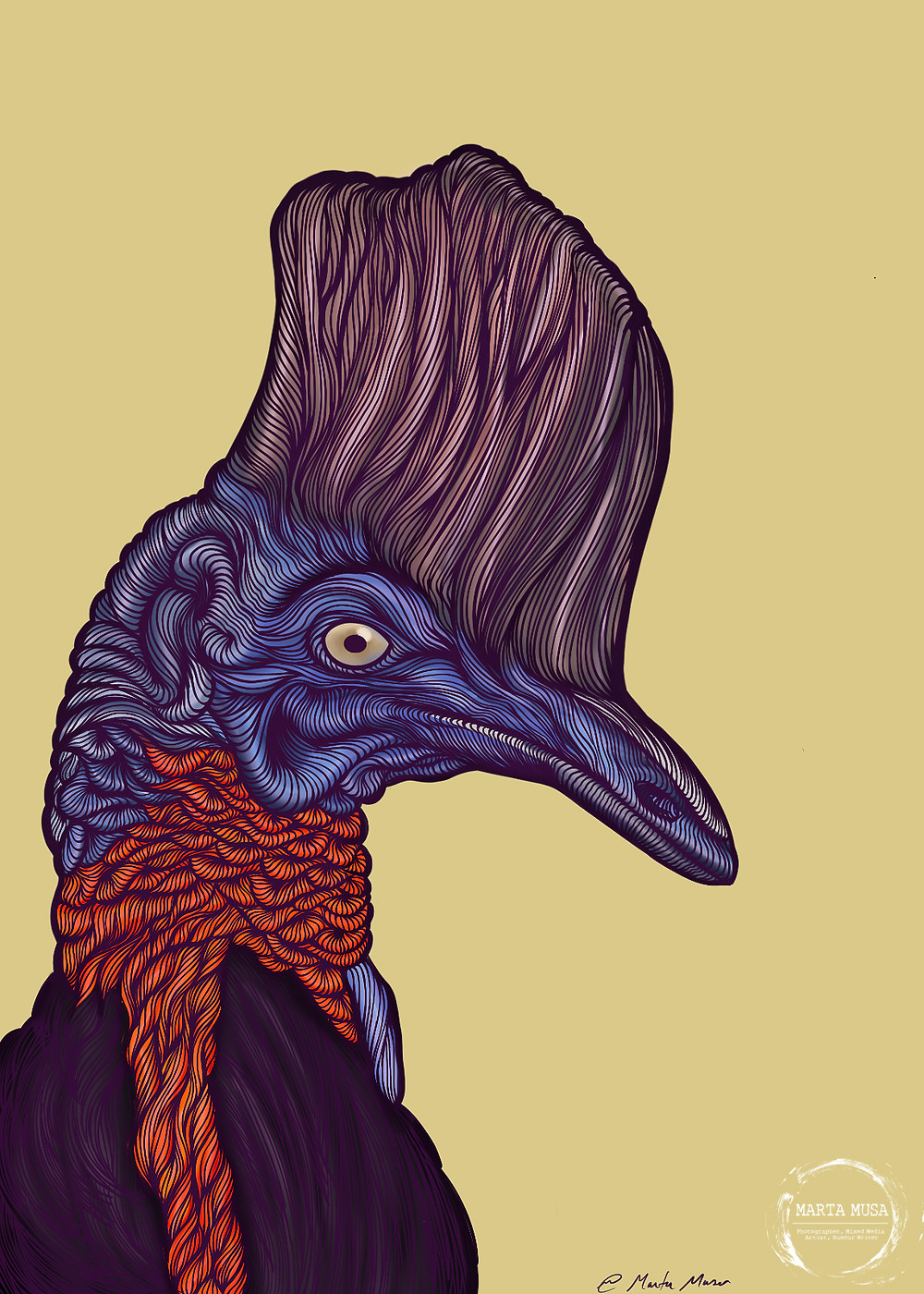 Contour drawing of a Cassowary in profile drawn against a yellow background.  The crest of the cassowary is a pale liliac, his face is a bluish/purple and his neck folds a red to orange gradient