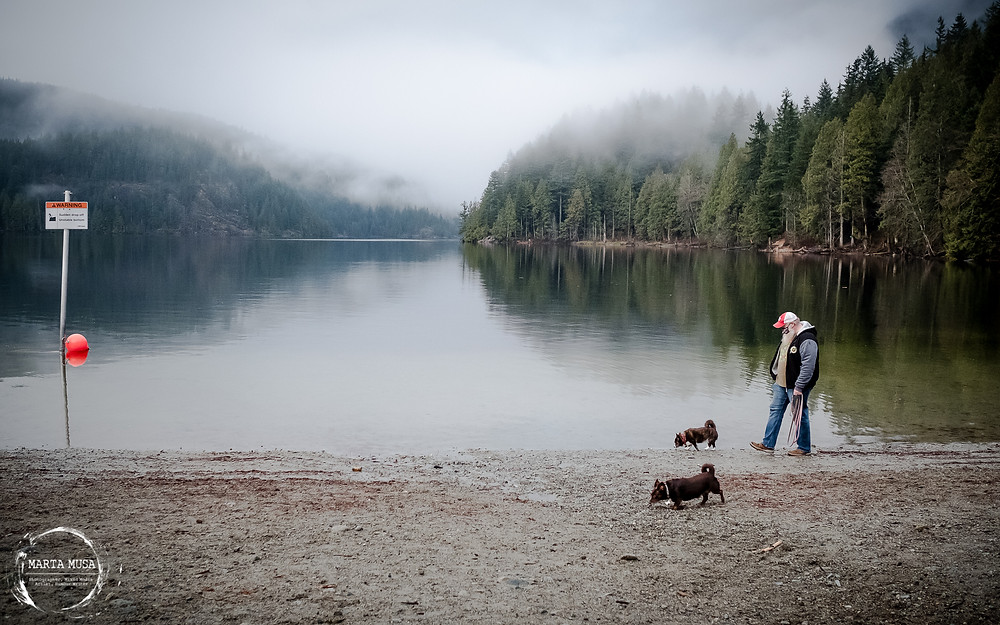 A photograph along a lakes edge with a pebbly beach.  In the background are mist covered forest of conifer trees.  In the foreground is a tall White man (Marta's husband) walking the two dogs, Carmela and Miguel, offleash near the shore.  To the left of the image is a sign warning about a steep drop off into the lake.