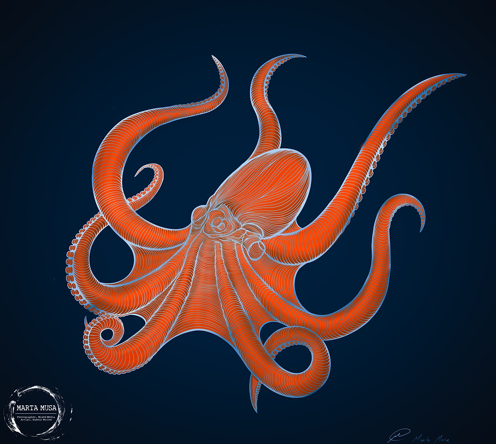 Contour line drawing of an orange octopus against a dark blue background.  The lines are in an irridescent silver.  Mr. Heebie Jeebie only has 7 tentacles