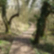 walk04.jpg