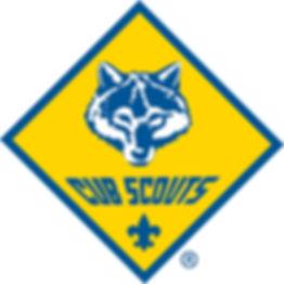 Cub scouts BSA