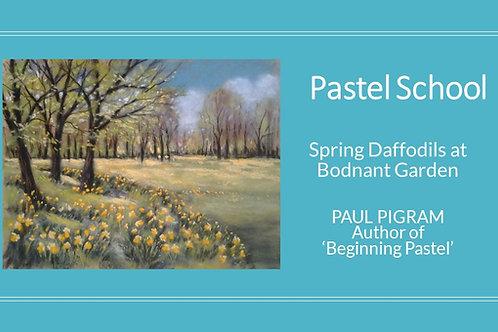 PASTEL SCHOOL Spring Daffodils at Bodnant Garden