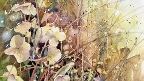 Finding a Subject by Liz Bolloten