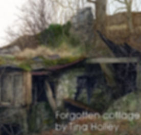 Forgotten cottage above Bethesda web.jpg