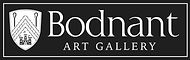 BODNANT art gallery logo cropped.jpg