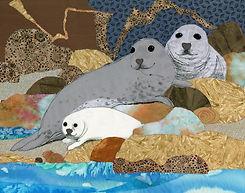 Seal Family.jpg